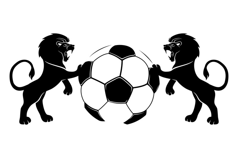 強いサッカー